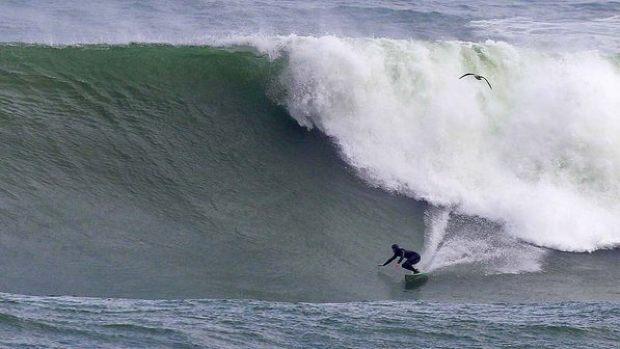 Surf8765
